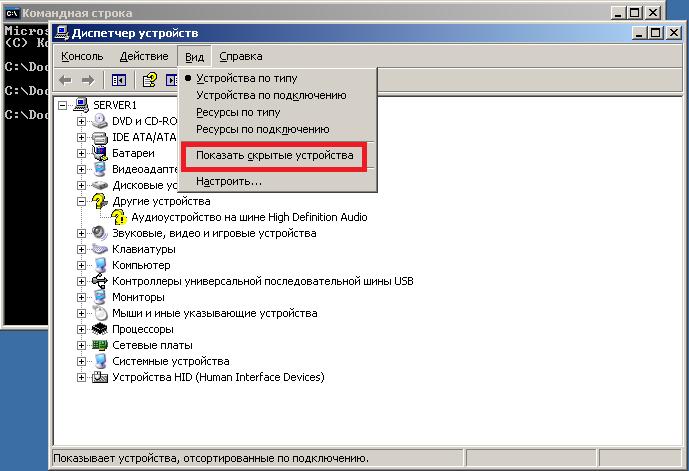 Диспетчер устройств Windows 2003 - показать скрытые устрйства